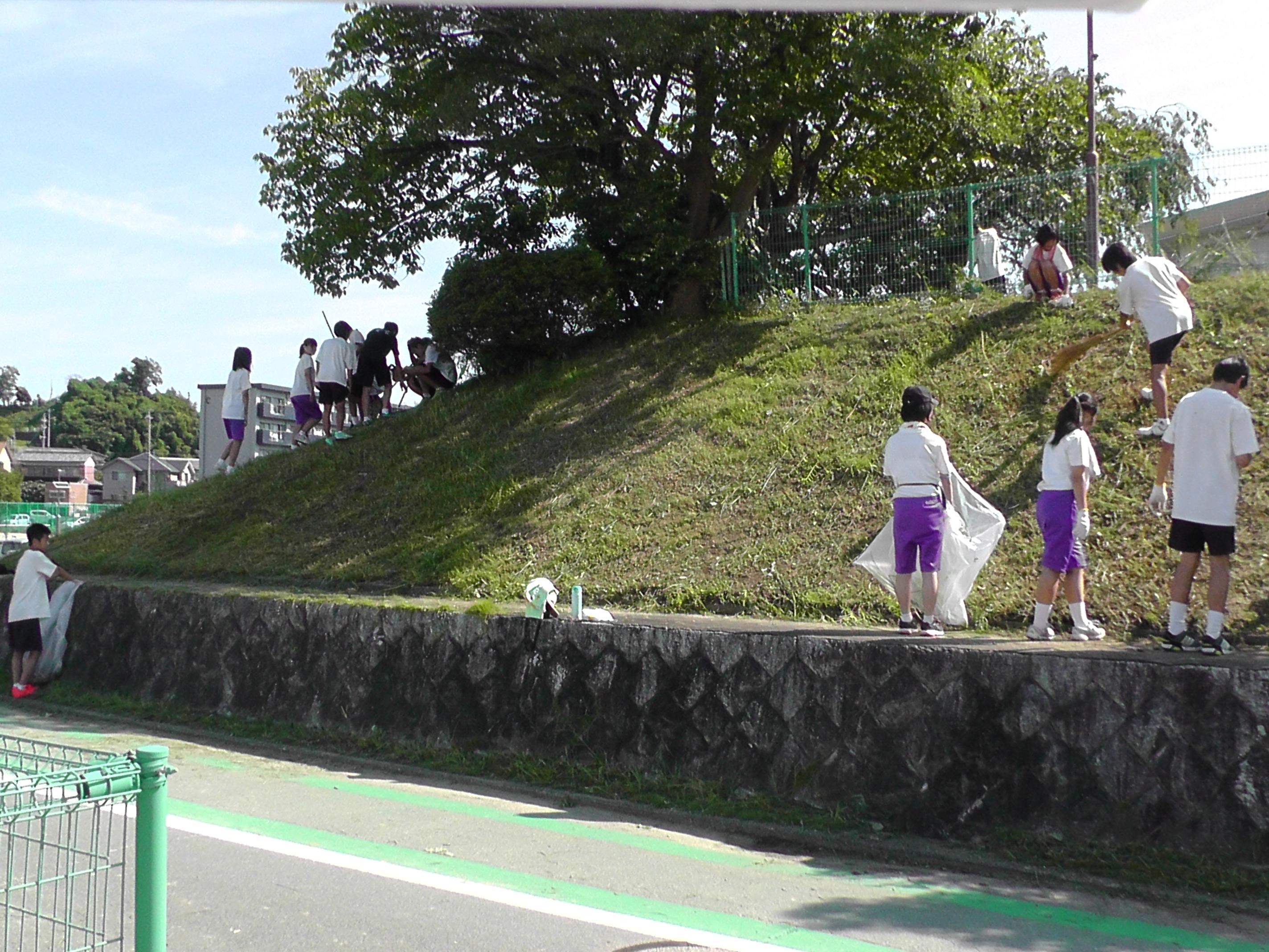 http://www.fuzoku.edu.mie-u.ac.jp/chu/%E8%8D%89%E5%88%88%EF%BC%92.JPG