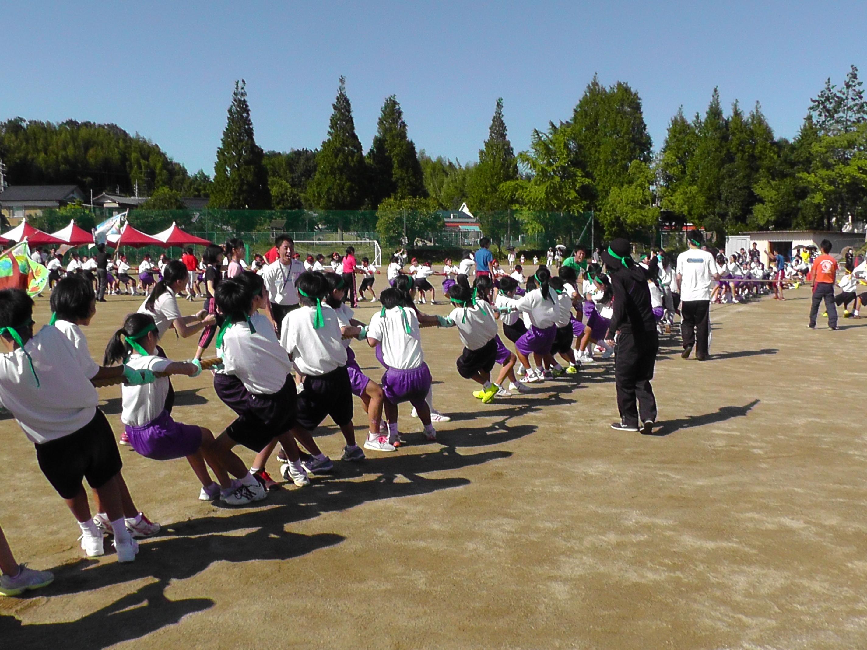 http://www.fuzoku.edu.mie-u.ac.jp/chu/121.JPG
