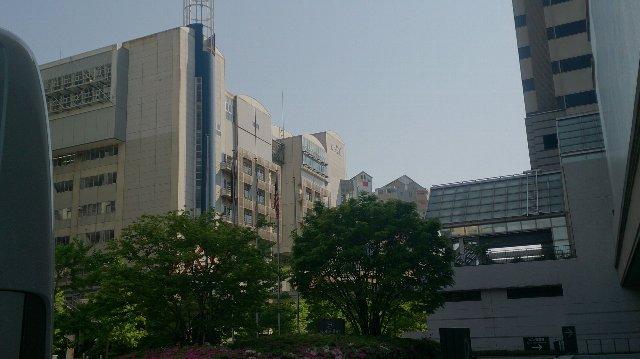 http://www.fuzoku.edu.mie-u.ac.jp/chu/2015/04/270407.jpg