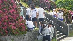 http://www.fuzoku.edu.mie-u.ac.jp/chu/IMGP1945.JPG