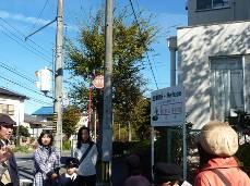 20121119_006.jpg